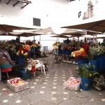 plaza de floras!