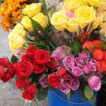 six roses for $1.50