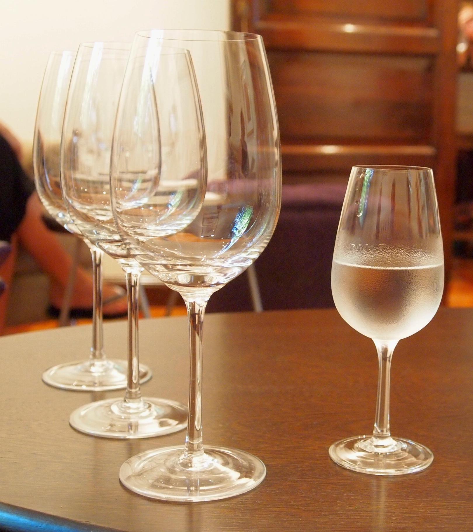 Vino tasting in Mendoza!